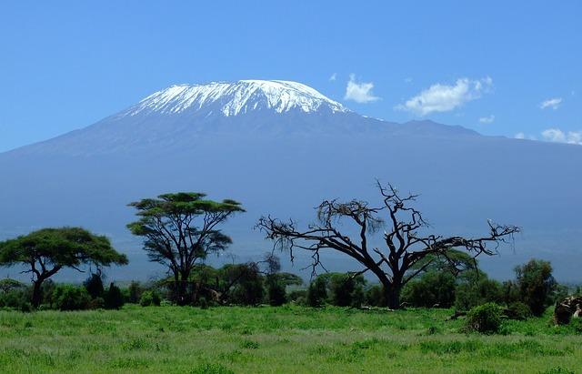 Blick auf den Kilimandscharo