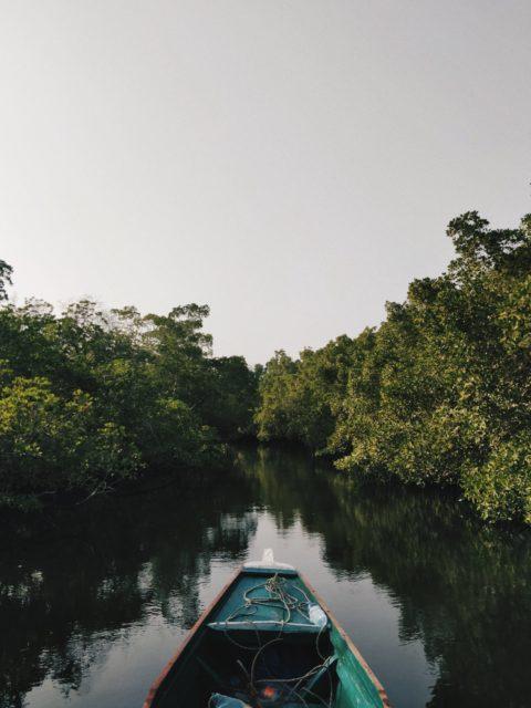 Sine und Saloum Delta