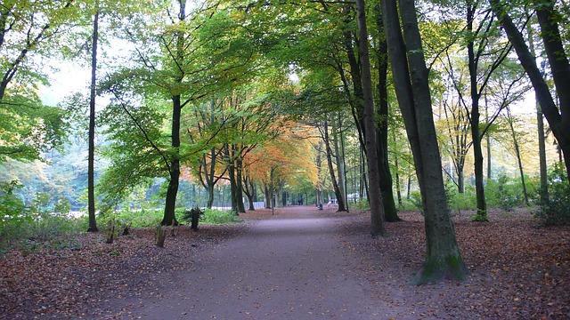 Der Hamburger Stadtpark ist kostenlos