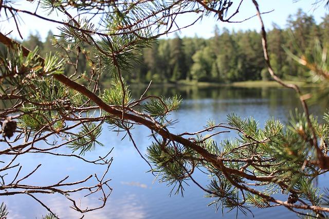 Lake Asnen in Schweden