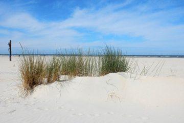 Baltrum: 10 Tipps für deinen Urlaub