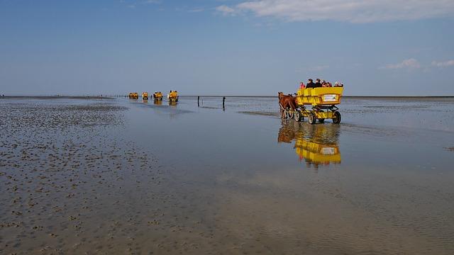 Ausflug durch das Wattenmeer
