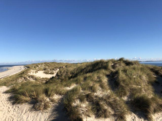 Die Nordspitze auf Amrum