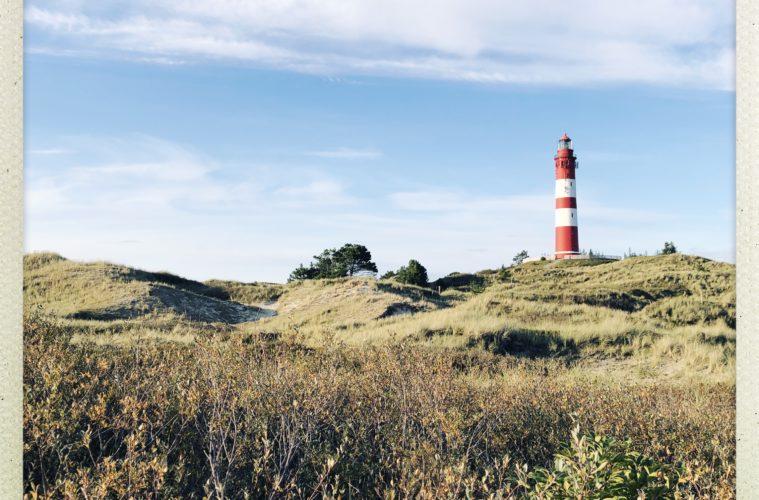Urlaub auf Amrum, die besten Reisetipps